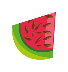 Delicious watermelon fruit vector