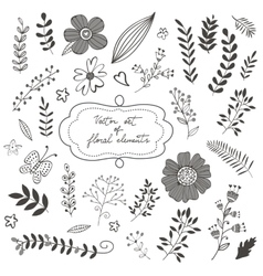 Elegant collection with flowers leaves and twigs vector image