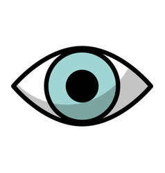 human eye view isolated icon vector image
