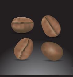 coffee bean vector image