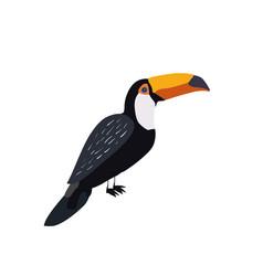 Summer bird vector