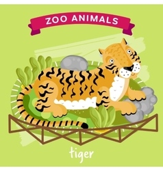 Zoo animal tiger vector