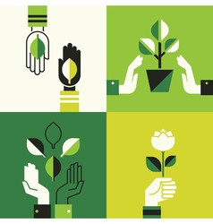 Caring hands holding leaves vector image