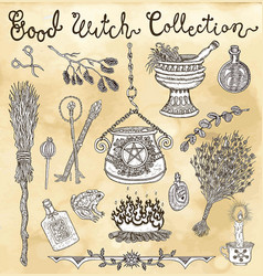 collection with witch objects for halloween vector image