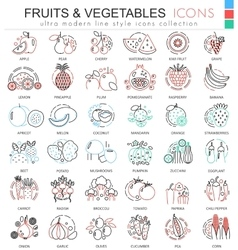 Fruits and vegetables color line outline vector