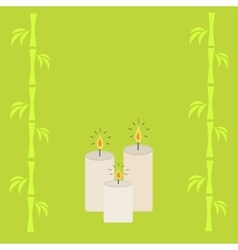 Three burning candles and bamboo green background vector