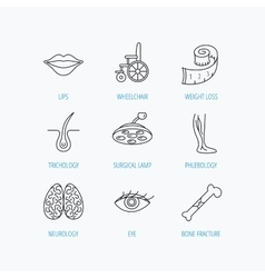 Eye neurology brain and vein varicose icons vector