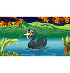 A black swan at the lake vector
