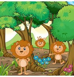 Three lions inside the forest vector image