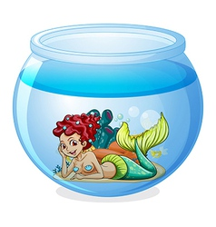An aquarium with a mermaid vector image