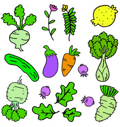 Doodle of vegetables set various vector