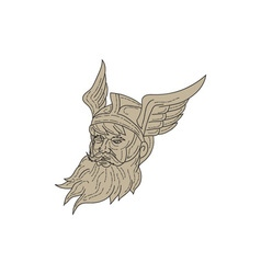 Norse God Odin Head Drawing vector image