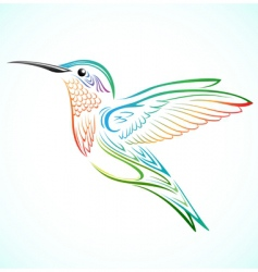 colorful hummingbird vector image