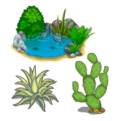 Pond with piranhas cactus plants and stones vector