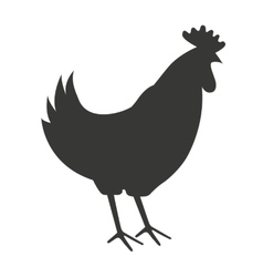 chicken farm isolated icon design vector image