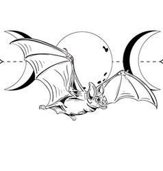 Bat4 vector image vector image