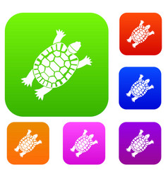 turtle set collection vector image vector image