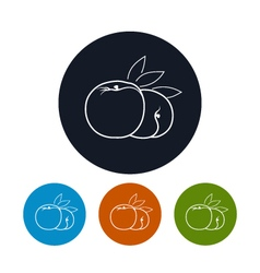 Icon peach in the contours vector