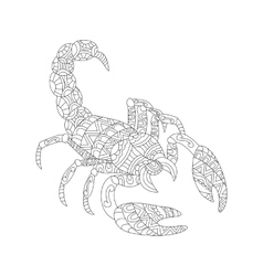 Scorpion coloring for adults vector image vector image