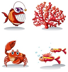 Sea animals and coral reef vector