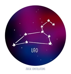 Leo sign zodiacal constellation made of vector