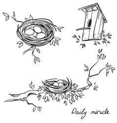 Hand drawn nests and a birdhouse vector