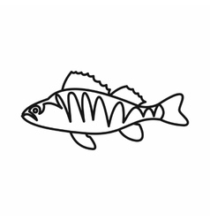 European perch perca fluviatilis icon vector