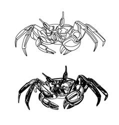 Crab-free vector