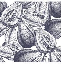 Guava fruit background vector