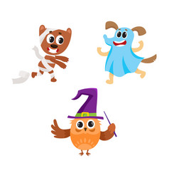Owl dog and bear characters in halloween costumes vector