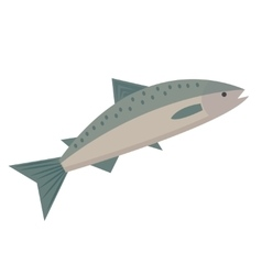 Salmon icon flat style saltwater fish isolated on vector