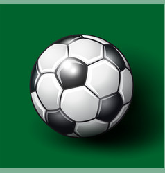 Soccer ball on the green background vector
