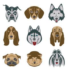 dog heads set vector image
