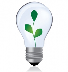 light bulb with plant vector image