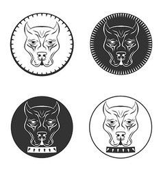 Set pit bull terrier logo dod face with collar vector