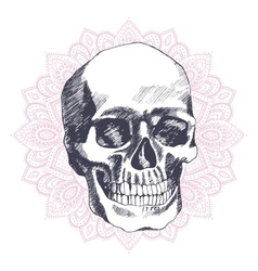 Vintage ethnic hand drawn human skull vector image vector image