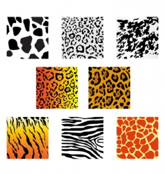 Animal fur and skin vector