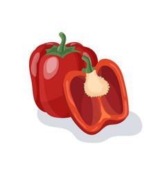 red pepper cartoon vector image vector image