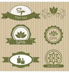 Set of design elements for spa salon vector image