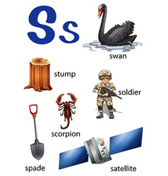 Things that start with the letter s vector