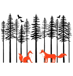 Foxes in forest vector image vector image
