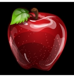 Red volume apple closeup natural image vector