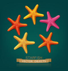 starfish isolated on dark green background vector image