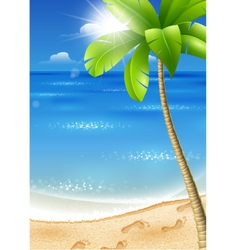 Tropical beach with palm tree vector image