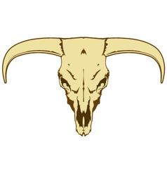 Steer skull vector