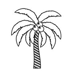 Palm tree isolated vector