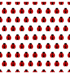 Seamless pattern with bright little ladybugs vector