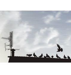 pigeons on the roof vector image