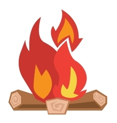Camp fire vector image