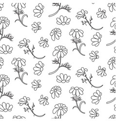 chamomile outline seamless floral pattern vector image vector image